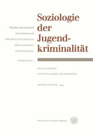 Soziologie der Jugendkriminalitat