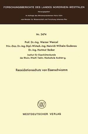 Reoxidationsschutz von Eisenschwamm af Werner Wenzel