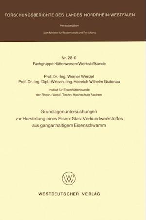 Grundlagenuntersuchungen zur Herstellung eines Eisen-Glas-Verbundwerkstoffes aus gangarthaltigem Eisenschwamm af Werner Wenzel