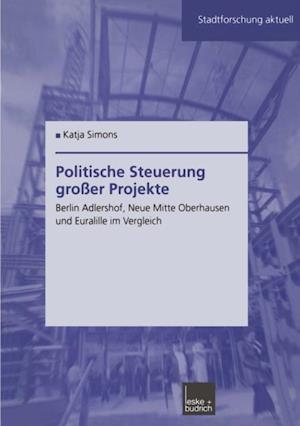 Politische Steuerung groer Projekte af Katja Simons