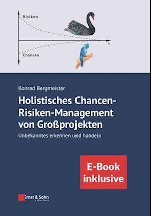 Holistisches Chancen-Risiken-Management von Grossprojekten