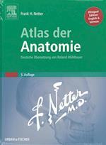 Atlas Der Anatomie (Netter Basic Science)