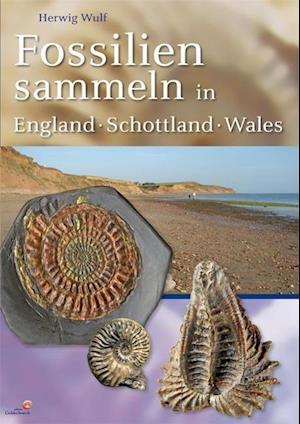 Fossilien sammeln in England - Schottland - Wales