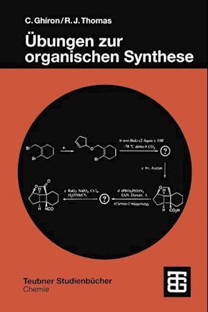 Bog, paperback Ubungen zur Organischen Synthese af Chiara Ghiron