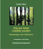 Wie Aus Stress Gefuhle Werden af Gerald Huther, H. Ther Gerald