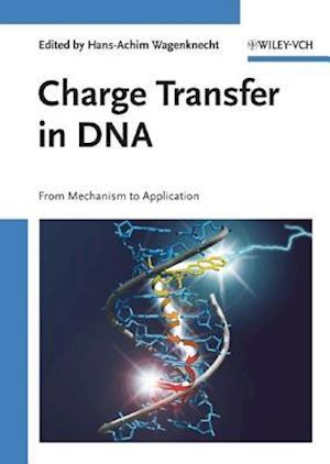 Charge Transfer in DNA