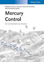 Mercury Control for Coal-Derived Gas Streams