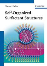 Self-Organized Surfactant Structures