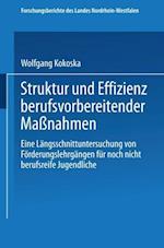 Struktur Und Effizienz Berufsvorbereitender Manahmen af Wolfgang Kokoska, Wolfgang Kokoska
