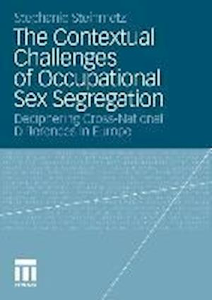 The Contextual Challenges of Occupational Sex Segregation