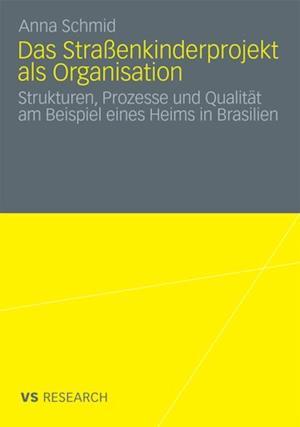 Das Straenkinderprojekt als Organisation af Anna Schmid