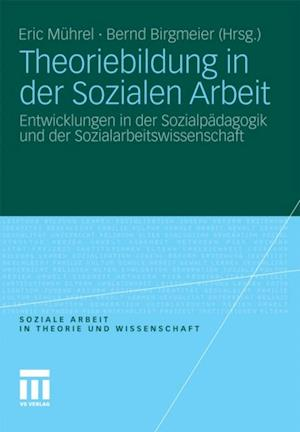 Theoriebildung in der Sozialen Arbeit