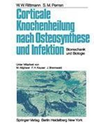 Corticale Knochenheilung Nach Osteosynthese und Infektion