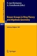 Brauer Groups in Ring Theory and Algebraic Geometry (Lecture Notes in Mathematics, nr. 917)