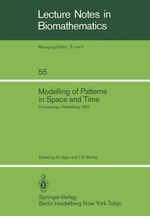 Modelling of Patterns in Space and Time : Proceedings of a Workshop held by the Sonderforschungsbereich 123 at Heidelberg July 4-8, 1983