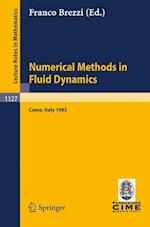 Numerical Methods in Fluid Dynamics af Franco Brezzi