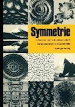 Symmetrie in Geistes- und Naturwissenschaft af Rudolf Wille