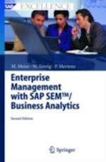 Enterprise Management with SAP SEM/Business Analytics