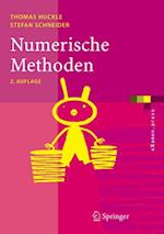 Numerische Methoden (Examen.press)
