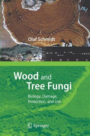 Wood and Tree Fungi