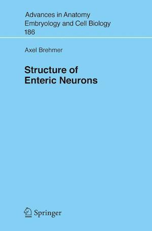 Structure of Enteric Neurons