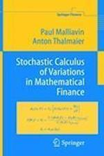 Stochastic Calculus of Variations in Mathematical Finance (Springer Finance)