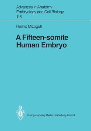 A Fifteen-Somite Human Embryo