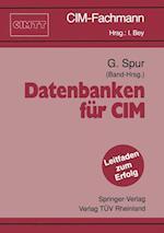 Datenbanken fur CIM