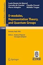 D-modules, Representation Theory and Quantum Groups (Lecture Notes in Mathematics)