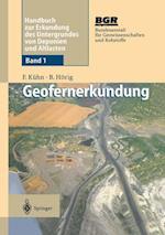 Geofernerkundung (Handbuch Zur Erkundung Des Untergrundes Von Deponien Und Alt, nr. 1)