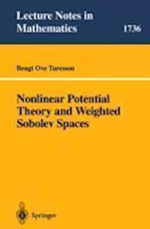 Nonlinear Potential Theory and Weighted Sobolev Spaces