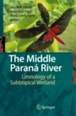 Middle Paranamp;#x00E1; River