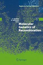 Molecular Genetics of Recombination af Aguilera