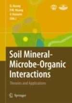 Soil Mineral Microbe-Organic Interactions