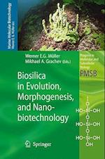 Biosilica in Evolution, Morphogenesis, and Nanobiotechnology (PROGRESS IN MOLECULAR AND SUBCELLULAR BIOLOGY, nr. 47)