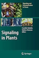 Signaling in Plants af Frantisek Baluska, Stefano Mancuso