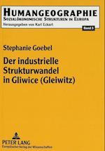 Der Industrielle Strukturwandel in Gliwice (Gleiwitz) (Humangeographie, nr. 3)