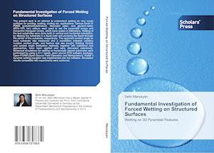 Fundamental Investigation of Forced Wetting on Structured Surfaces