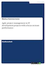 Agile Project Management in It Development Projects with a Focus on Team Performance