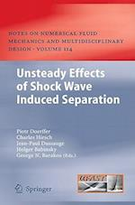 Unsteady Effects of Shock Wave Induced Separation (Notes on Numerical Fluid Mechanics and Multidisciplinary Design)