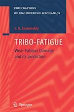 Tribo-Fatigue (Foundations of Engineering Mechanics)
