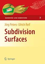 Subdivision Surfaces (Geometry and Computing, nr. 3)