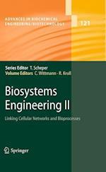 Biosystems Engineering af Christoph Wittmann, Rainer Krull