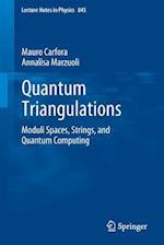 Quantum Triangulations (LECTURE NOTES IN PHYSICS)