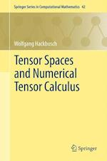 Tensor Spaces and Numerical Tensor Calculus (SPRINGER SERIES IN COMPUTATIONAL MATHEMATICS, nr. 42)
