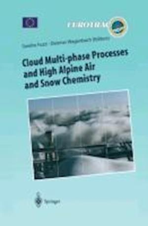 Cloud Multi-phase Processes and High Alpine Air and Snow Chemistry : Ground-based Cloud Experiments and Pollutant Deposition in the High Alps