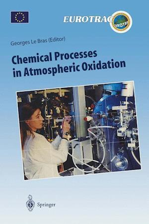 Chemical Processes in Atmospheric Oxidation