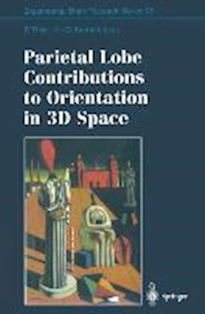 Parietal Lobe Contributions to Orientation in 3D Space