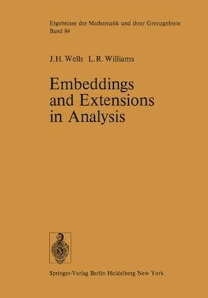 Embeddings and Extensions in Analysis