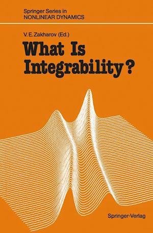 What Is Integrability?